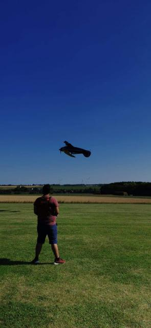 Low pass at accros du servos